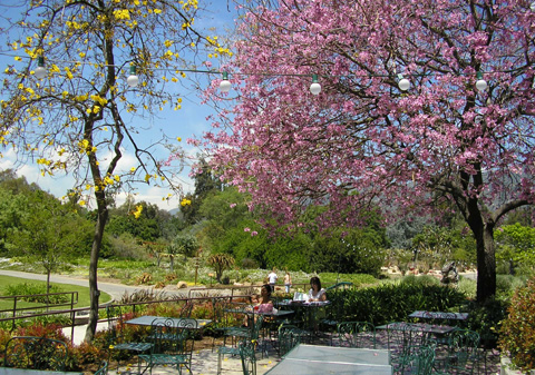 The Los Angeles County Arboretum Botanic Garden Is A Rich Historical Site That Includes Native American