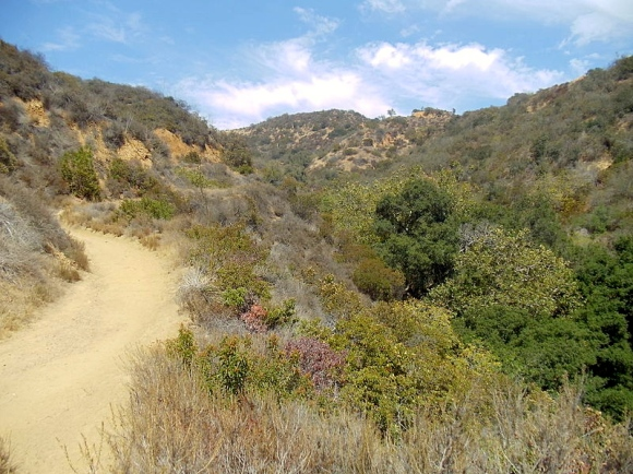 Hastain_Trail_in_Franklin_Canyon_Park,_Los_Angeles,_California