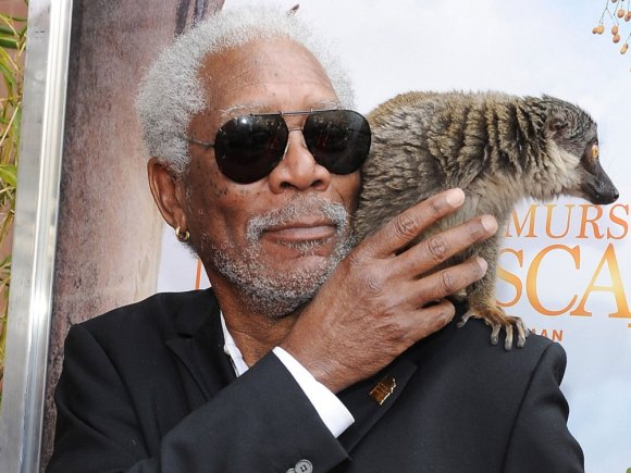 morgan-freeman-island-of-lemurs